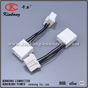 wire harness with 10 pin electrical connectors WB005