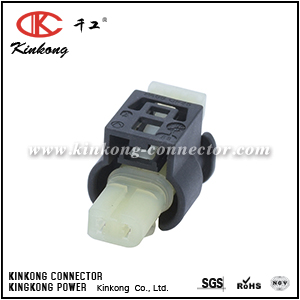 805-120-522 2 Pole Female housing wiring connector CKK7022H-1.0-21
